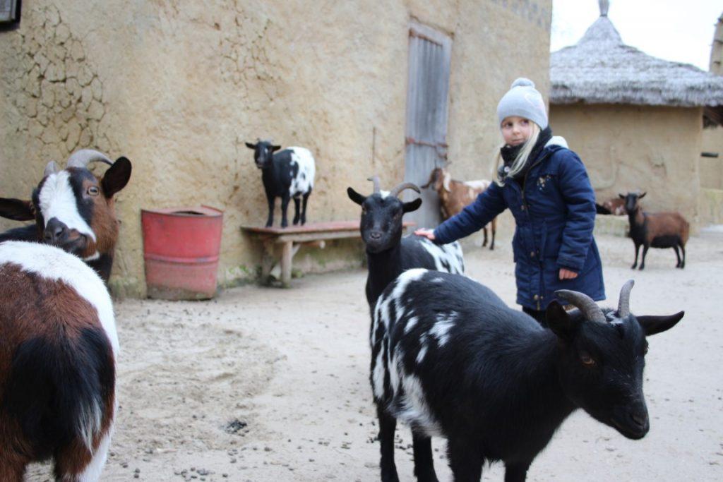 Wildlands Kinderboerderij