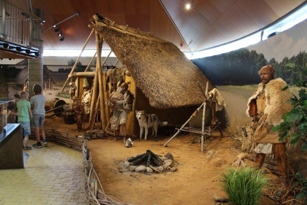 Hunebedmuseum Hunebedcentrum Borger Drenthe