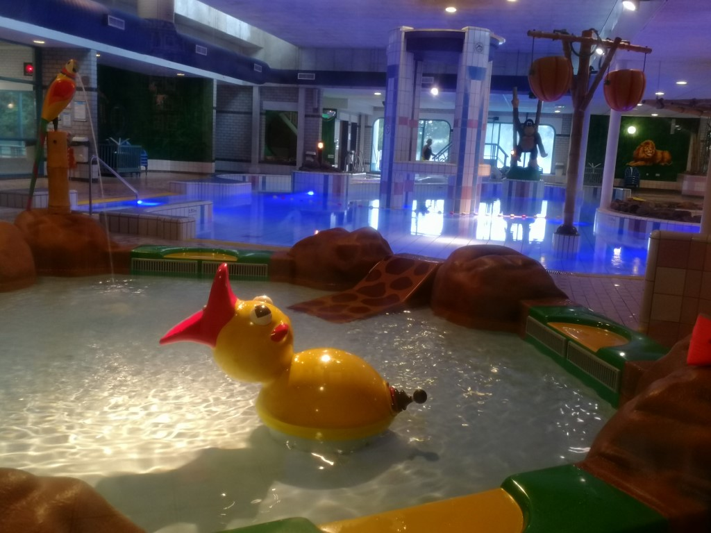 Zwembad Roompot Hunzedal